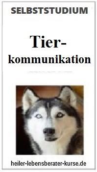 tierkommunikation-lernen
